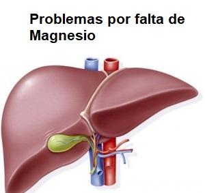 magnesio e hígado