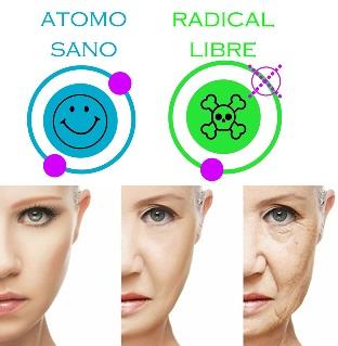 vitamina d envejecimiento