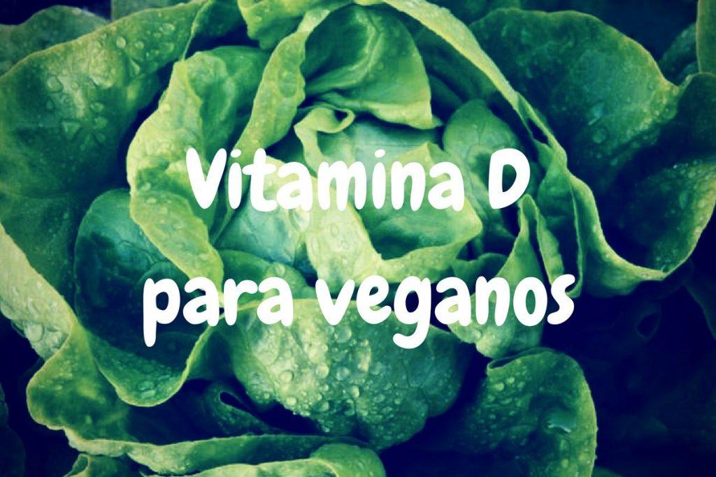 Fuentes veganas de vitamina b12