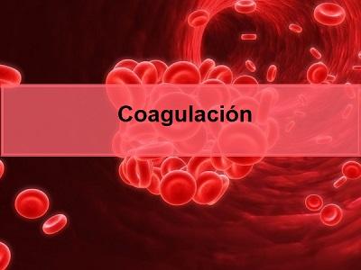 Coagulación de la sangre y vitamina K