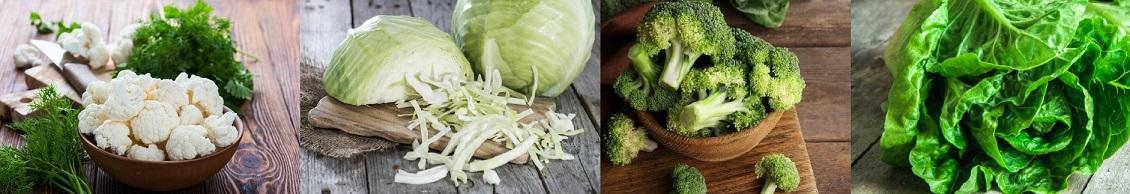 De dónde obtenemos la vitamina K