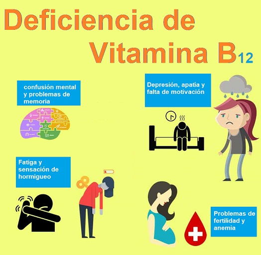 Causas y problemas deficiencia B12