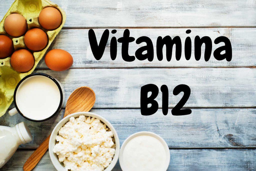 Otras fuentes donde encontrar vitamina B12