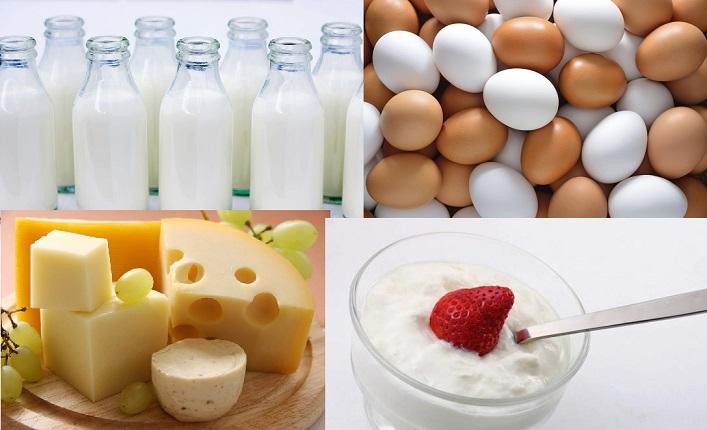 leche y queso B12